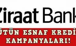 Ziraat Bankası Esnaf Kredisi Başvurusu (12'den Fazla Destek Kredisi)