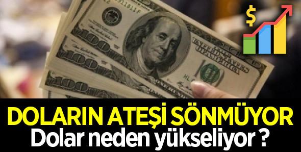 Doların ateşi sönmüyor, dolar neden yükseliyor ?