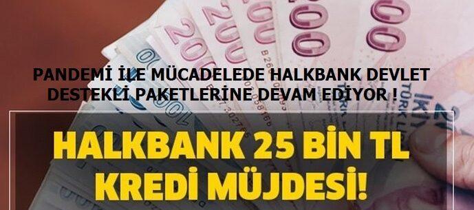 Halkbank'ın Devlet Destekli Tüm Salgın Paketleri