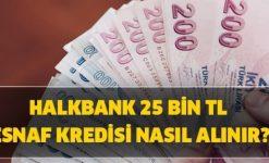 Halkbank'tan Esnaf Kefalet Faizsiz Kredi Müjdesi (Şartlar ve Başvuru)